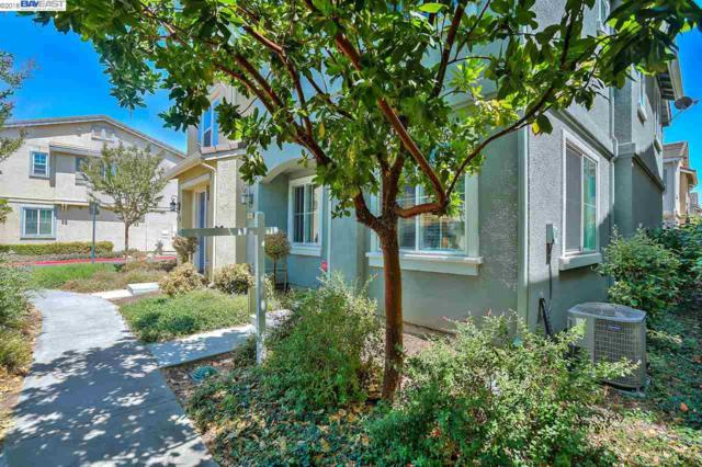 22864 Amador St, Hayward, CA 94541 (#BE40825245) :: Strock Real Estate