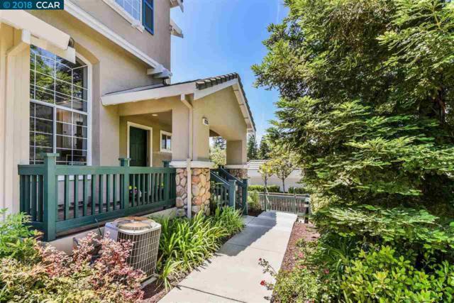 8205 Mallard St, Danville, CA 94506 (#CC40825764) :: von Kaenel Real Estate Group