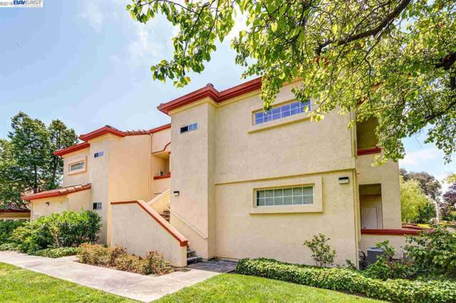7025 Stagecoach Rd, Dublin, CA 94568 (#BE40825908) :: von Kaenel Real Estate Group
