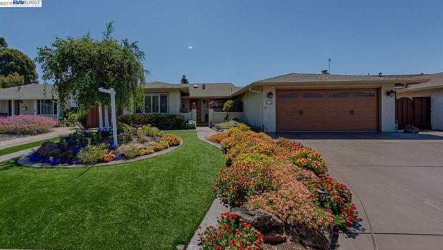 4948 Norwich, Newark, CA 94456 (#BE40825922) :: The Kulda Real Estate Group