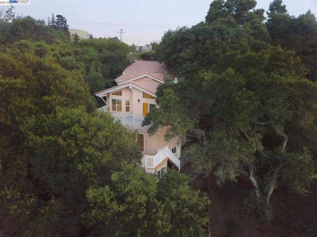 26472 Parkside Dr, Hayward, CA 94542 (#BE40825939) :: Strock Real Estate