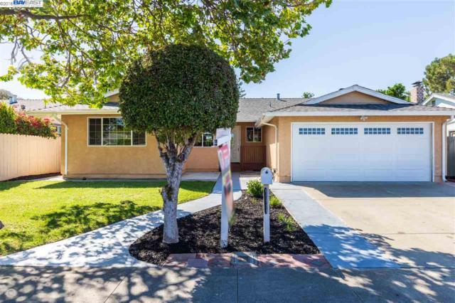 4751 Loretta Way, Union City, CA 94587 (#BE40826052) :: Strock Real Estate