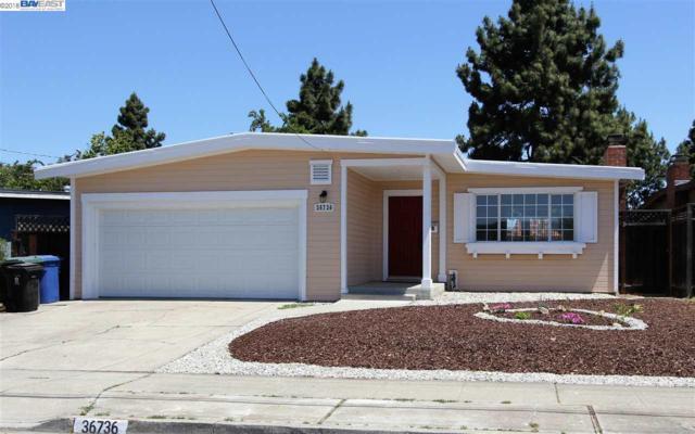 36736 Bishop St, Newark, CA 94560 (#BE40826137) :: Julie Davis Sells Homes