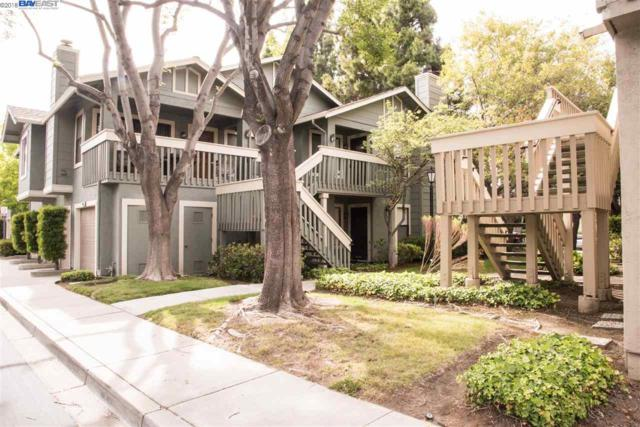 4983 Conway Ter, Fremont, CA 94555 (#BE40826281) :: Strock Real Estate