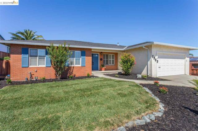 4362 Hillview Dr, Pittsburg, CA 94565 (#EB40826385) :: Brett Jennings Real Estate Experts