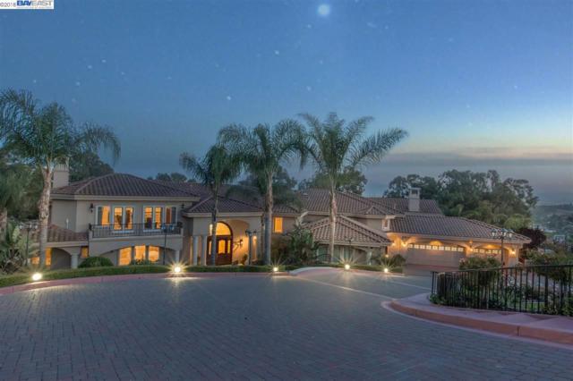 661 Monticello Ter, Fremont, CA 94539 (#BE40826683) :: Julie Davis Sells Homes