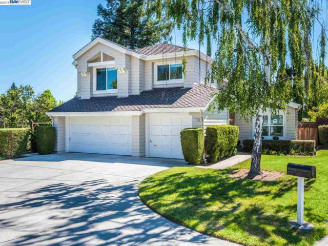 11608 Birch Spring Ct, Cupertino, CA 95014 (#BE40826865) :: RE/MAX Real Estate Services