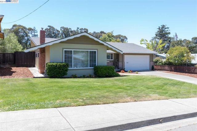 3191 Saddle Drive, Hayward, CA 94542 (#BE40826880) :: Strock Real Estate