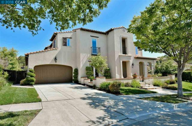 2223 Britannia Dr, San Ramon, CA 94582 (#CC40827025) :: The Kulda Real Estate Group