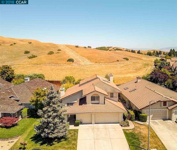 420 Marble Canyon Court, San Ramon, CA 94582 (#CC40827084) :: The Goss Real Estate Group, Keller Williams Bay Area Estates