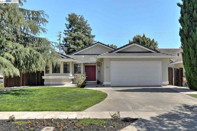 1494 Shinn Court, Fremont, CA 94536 (#BE40827152) :: Strock Real Estate