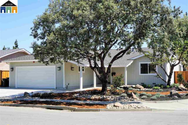 38208 Hastings, Fremont, CA 94536 (#MR40827692) :: The Kulda Real Estate Group