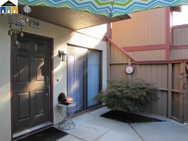 248 Hackamore Commons, Fremont, CA 94539 (#MR40827833) :: The Warfel Gardin Group