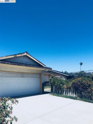 3647 Wilmington Road, Fremont, CA 94538 (#BE40828921) :: The Kulda Real Estate Group