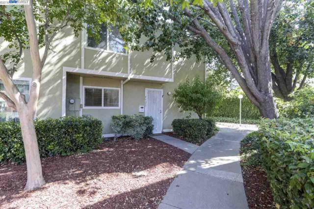 4525 Capewood Ter, Fremont, CA 94538 (#BE40829140) :: The Kulda Real Estate Group