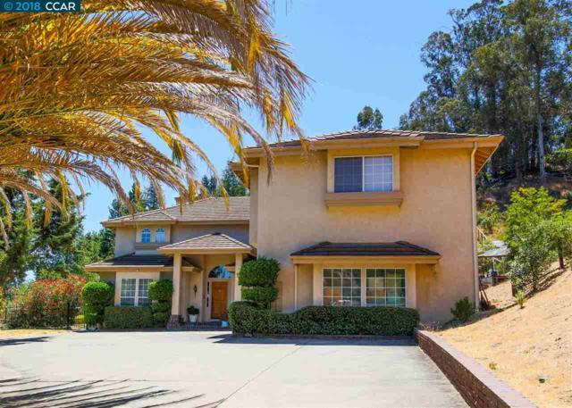 1025 Silverhill Dr, Lafayette, CA 94549 (#CC40829333) :: Strock Real Estate