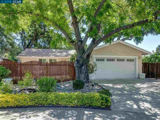 1516 Rugby Ct, Concord, CA 94518 (#CC40829729) :: Strock Real Estate