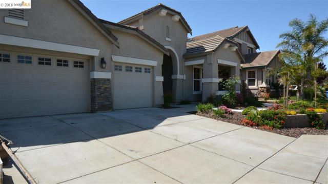 161 Monet Dr, Oakley, CA 94561 (#EB40830042) :: von Kaenel Real Estate Group