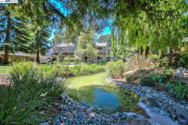 37202 Yolo Ter, Fremont, CA 94536 (#BE40830199) :: The Kulda Real Estate Group
