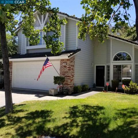 1058 Green Point Ct, Concord, CA 94521 (#CC40830418) :: Intero Real Estate