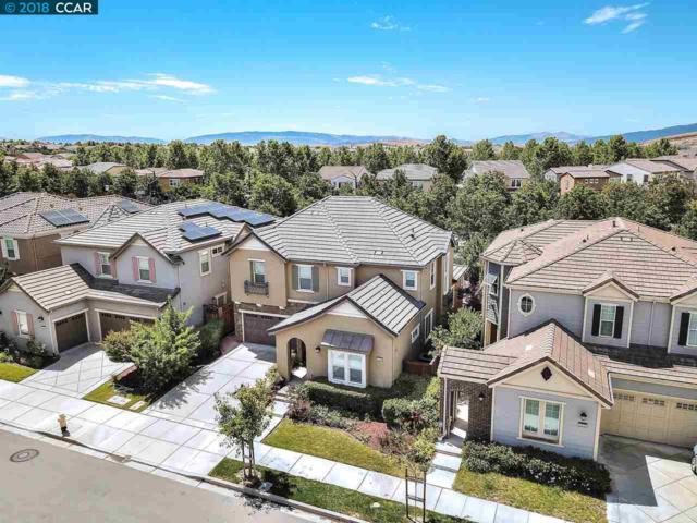 1076 Hoskins Ln, San Ramon, CA 94582 (#CC40830440) :: Brett Jennings Real Estate Experts