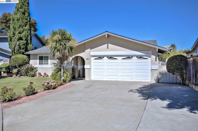 2665 Hilton St, Union City, CA 94587 (#BE40830679) :: Brett Jennings Real Estate Experts