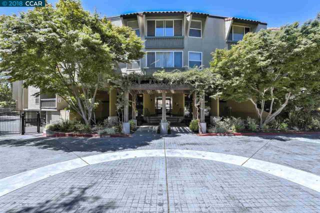 1087 Murrieta Blvd, Livermore, CA 94550 (#CC40830799) :: The Kulda Real Estate Group