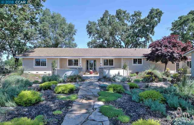 10041 Pleasant Grove School Rd, Elk Grove, CA 95624 (#CC40831238) :: Intero Real Estate