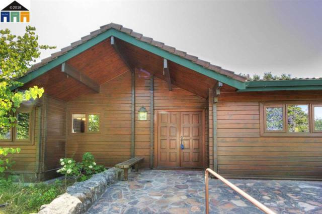 1225 Morrison Canyon Rd, Fremont, CA 94536 (#MR40831260) :: RE/MAX Real Estate Services