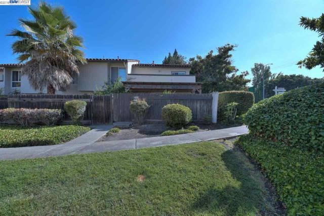 41081 Ramon Ter, Fremont, CA 94539 (#BE40831585) :: Brett Jennings Real Estate Experts