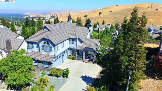 461 Obsidian Way, Clayton, CA 94517 (#BE40831712) :: Julie Davis Sells Homes