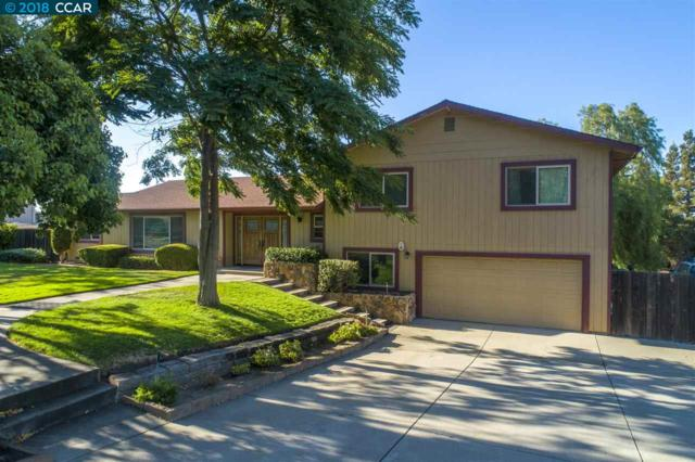 2952 Vine Hill Rd, Oakley, CA 94561 (#CC40831914) :: The Kulda Real Estate Group