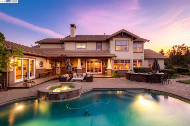 3504 Mercato Ct, Pleasanton, CA 94566 (#BE40832743) :: The Kulda Real Estate Group