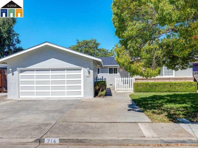 714 Crane Ave, Livermore, CA 94551 (#MR40832754) :: Brett Jennings Real Estate Experts