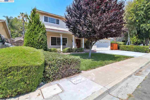 5007 Hummingbird Rd, Pleasanton, CA 94566 (#BE40833291) :: The Warfel Gardin Group
