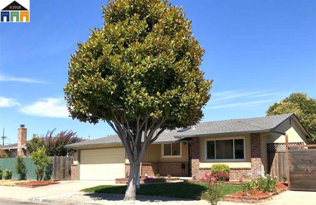 25570 Kay Avenue, Hayward, CA 94545 (#MR40833392) :: Brett Jennings Real Estate Experts