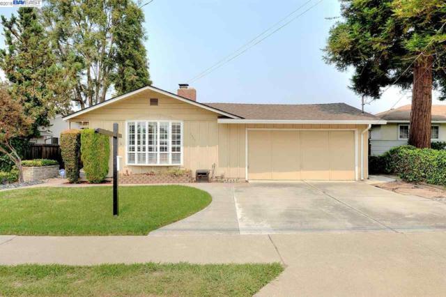 2329 Olive Ave, Fremont, CA 94539 (#BE40833617) :: Brett Jennings Real Estate Experts