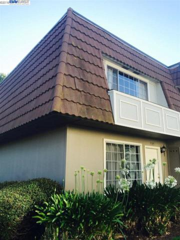 3105 Cochise Way, Pleasanton, CA 94588 (#BE40833709) :: The Warfel Gardin Group