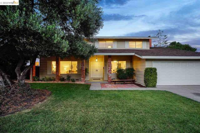 7745 Castilian Rd, Dublin, CA 94568 (#EB40833783) :: Brett Jennings Real Estate Experts