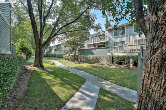 36996 Meadowbrook Cmn, Fremont, CA 94536 (#BE40833819) :: Intero Real Estate