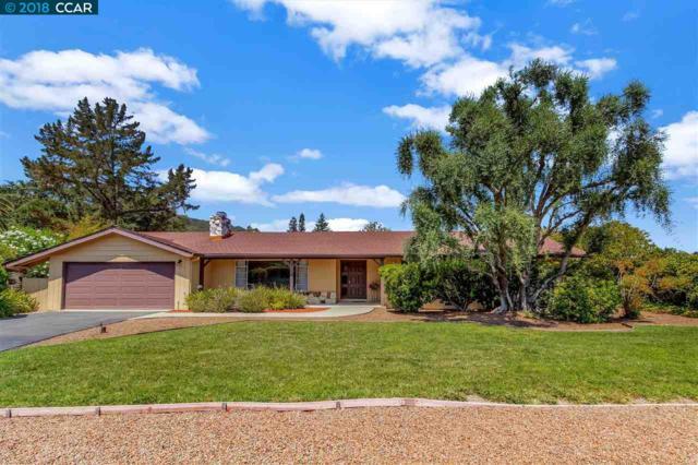 20 Susan Ct, Alamo, CA 94507 (#CC40834325) :: Brett Jennings Real Estate Experts