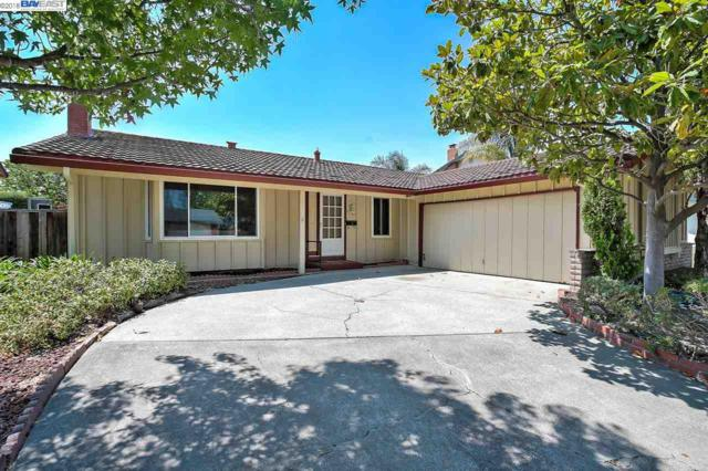 35141 Maidstone Ct, Newark, CA 94560 (#BE40834399) :: The Gilmartin Group
