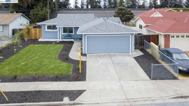 35535 Cabral Dr, Fremont, CA 94536 (#BE40834420) :: Brett Jennings Real Estate Experts