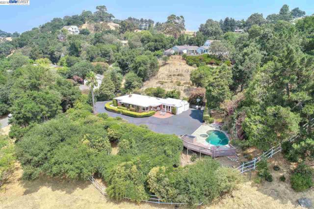 3353 Hillside Ter, Lafayette, CA 94549 (#BE40834431) :: Strock Real Estate