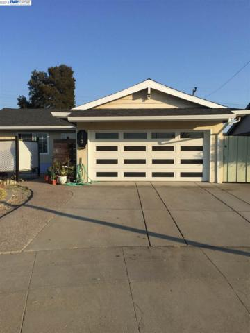 WILMINGTON Rd, Fremont, CA 94538 (#BE40834506) :: The Gilmartin Group