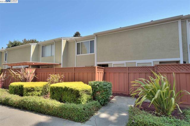 4537 Capewood Ter, Fremont, CA 94538 (#BE40834655) :: The Gilmartin Group
