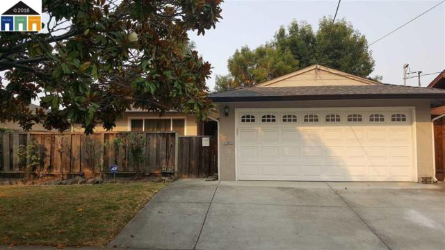 24613 Broadmore Ave, Hayward, CA 94544 (#MR40834658) :: The Goss Real Estate Group, Keller Williams Bay Area Estates