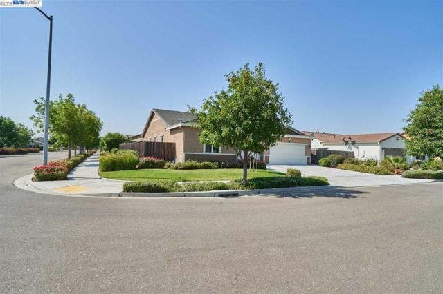 905 Painted Shore Ct, Oakley, CA 94561 (#BE40834824) :: The Goss Real Estate Group, Keller Williams Bay Area Estates