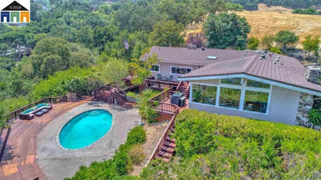 255 Kuss Road, Danville, CA 94526 (#MR40834951) :: The Kulda Real Estate Group