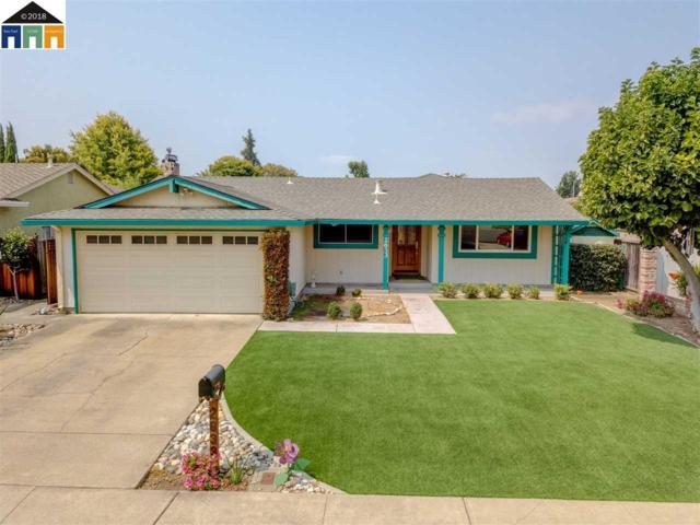 2633 Mallard Ct, Union City, CA 94587 (#MR40836176) :: The Kulda Real Estate Group